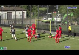 Hockeyvideos.de – Highlights – 2. Feldhockey-Bundesliga Herren Herren – DSD vs. SWK – 16.06.2019 18:00 h