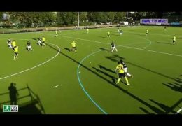 Hockeyvideos.de – Highlights – 2. Feldhockey-Bundesliga Herren Herren – SWN vs. MSC – 14.09.2019 17:00 h